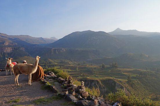 Sarah Belwriting Reisblog Cusco