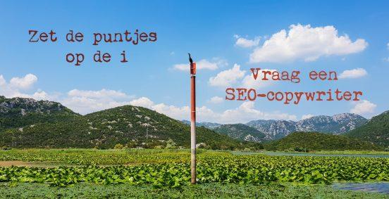 Blog-Sarah-Belwriting-SEO-Copywriter-Fouten-in-webtekst