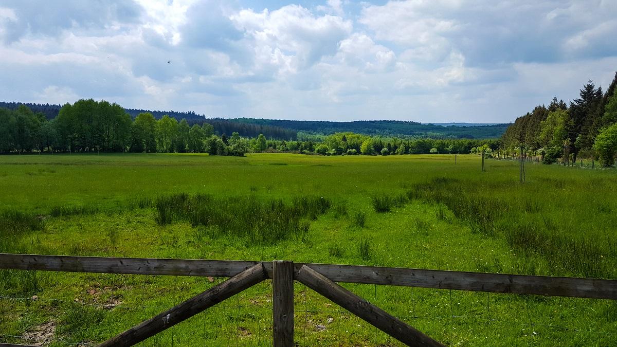 Sarah Belwriting Reisblog Ardennen