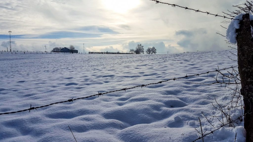 Winterwandeling Ardennen Blog Sarah Belwriting