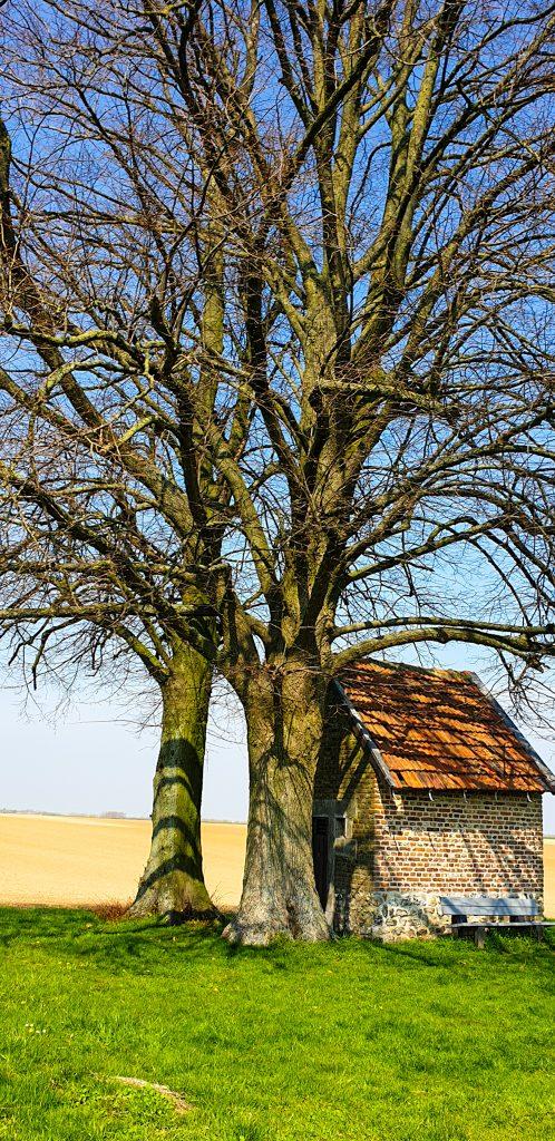 Wandeling in Limburg Herstappe_ Sarah Belwriting (2)