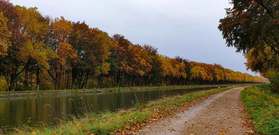 Wandelen in Limburg_Reisblog_Sarah Claes